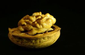 walnut, nut