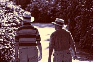 two elderly men walking in tranquility