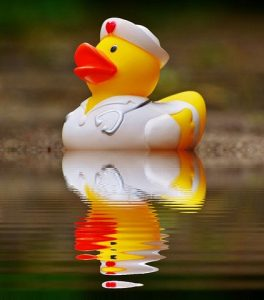 rubber duck nurse on other side of water