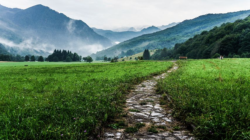 path in nature with view of mountains